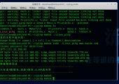 linux下ping程序实现